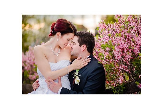 svatební prezentace